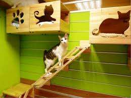 indoor cat house pet house design pinterest cat houses cat