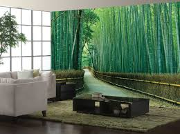 picture bamboo forest wall mural ideas for living room decor