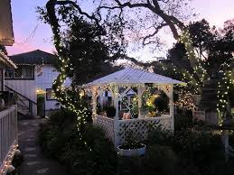 garden lighting ideas ask localgardeners