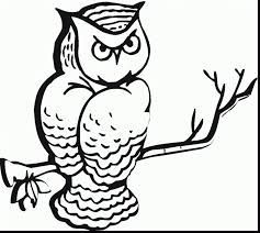 terrific printable owl coloring pages with coloring pages