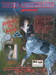 bluetick coonhound uk breeders ukc forums bluetick stud dogs and kennel promotions