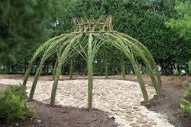 willow gazebo projects living willow structures by bonnie gale
