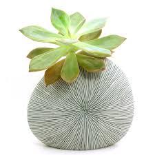 white porcelain ceramic flower pots planter pots gray stripes
