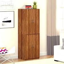 shallow storage cabinet with doors shallow built in cabinets for behind the doors bathroom with storage