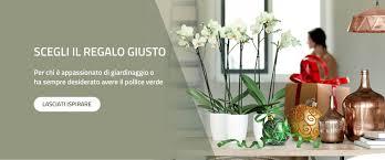 Vasi Da Interni Design by Vendita On Line Vasi In Resina Fioriere E Balconiere Da Interno