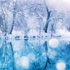 nature winter snowy tree ipad air wallpaper download iphone