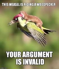 Your Argument Is Invalid Meme - weasel riding a woodpecker memes imgflip