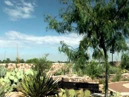 Botanical Gardens El Paso El Paso Botanical Garden Botanical Gardens El Paso Cactus And