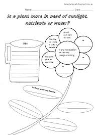 pictures on planting worksheets for preschool wedding ideas