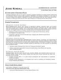 professional marketing resume marketing representative resume insurance sales representative