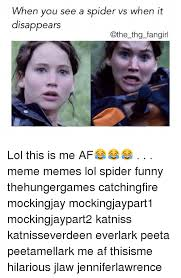 Thg Memes - when you see a spider vs when it disappears the thg fangirl lol this