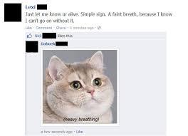 Cat Heavy Breathing Meme - funny breathing meme breathing best of the funny meme