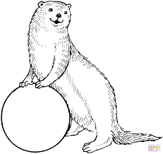 otter and a ball coloring page free printable coloring pages