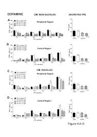 autocrine and paracrine regulation of prolactin secretion by