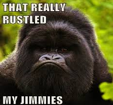 Gorilla Munch Meme - jimmyfungus com that really rustled my jimmies the complete