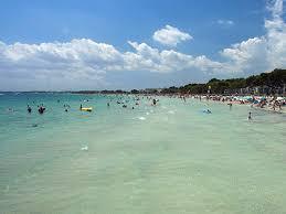 Blue Flag Beach Platja D U0027alcúdia Alcúdia Mallorca Blue Flag Beach Enjoy Mallorca