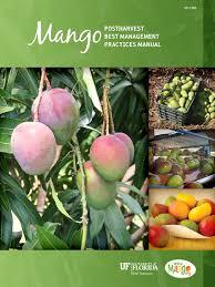 mango manual water heating postharvest