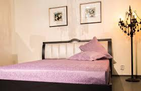 modern zen style living room interior design ideas pink zebra