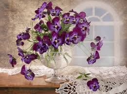 Cool Cup Flowers Old Great Flower Lace Violets Flowers Elegantly Delicate