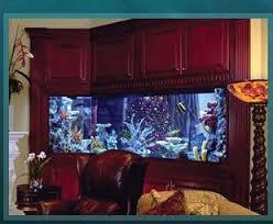 Home Aquarium Decorations 13 Best Tanked Images On Pinterest Tanked Aquariums Aquarium