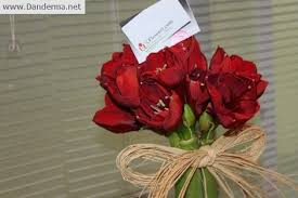 flowers today i received a lovely bouquet of flowers today danderma s weblog