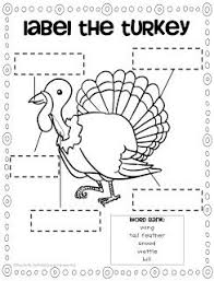 67 best preschool thanksgiving images on fall