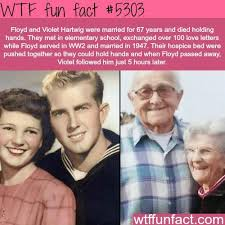 Fun Things For 67 Years Old | now that s true love crazy weird but true pinterest wtf fun