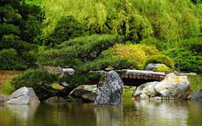 small pine tree by the wooden bridge wallpaper nature wallpapers