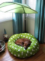 blinky u0027s new bed with canopy the bed is from maxwell dog i u2026 flickr
