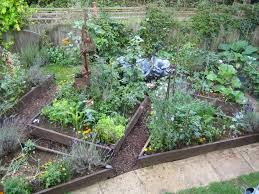 Garden Allotment Ideas Garden Designs Garden Allotment Designs 25 Trending Vegetable