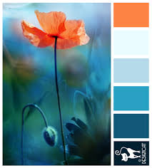 Soothing Color Schemes Gorgeous Colorpalette Color Love Orange And Teal Http