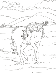 free colouring pages horse dinosaur