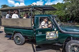 african jeep 2 night hluhluwe safari package hluhluwe game reserve south africa