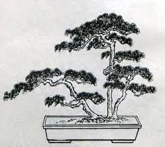 32 best japanese bonsai tree tattoo outlines images on pinterest