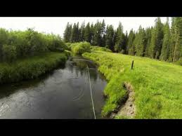 Haskins Valley Campground Fly Fishing On Yellow Creek Global Flyfisher