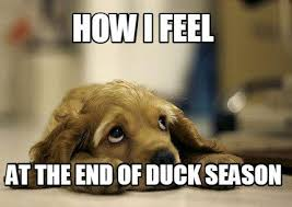 Duck Meme - these duck and goose hunting memes are almost fowl