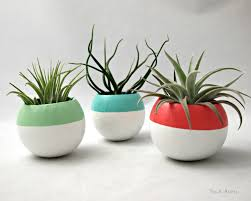 lovely smart white indoor plant pots with blue and red also green