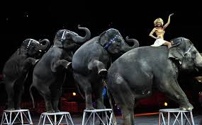 how long is the monster truck show ringling bros circus u0027the greatest show on earth u0027 to close