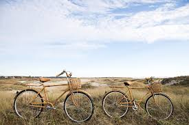 cape cod bicycle home design inspirations