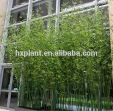hengxiang 2016 artificial plant ornamental garden fence sale