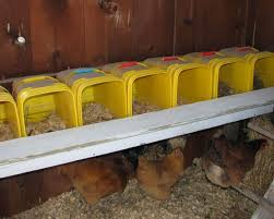 the 25 best nesting boxes for chickens ideas on pinterest