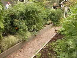 urban vegetable garden ideas garden design ideas