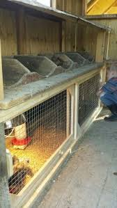 brooder under nesting boxes in the coop features sliding doors