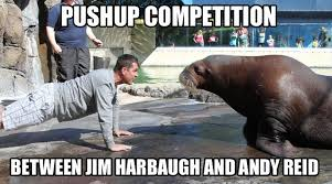 Jim Harbaugh Memes - jim harbaugh and andy reid square off daily snark