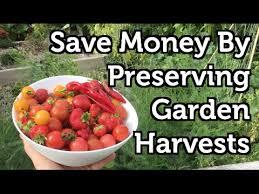 preserve garden fruit and vegetables 4 easy methods youtube