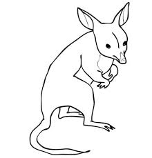 Bandicoot From Australia Coloring Page Free Printable Coloring Pages Crash Bandicoot Coloring Pages