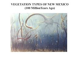 New Mexico vegetaion images New mexico forests fig 2 1 in dick peddie w a new mexico jpg