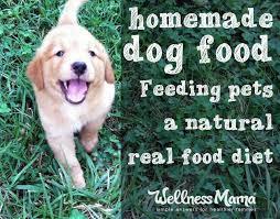 homemade dog food real food for pets wellness mama