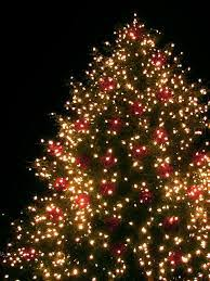 tree lighting events wpb area west palm parks