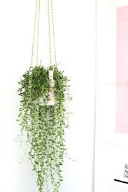 wall hanging planters wall ideas wall hanging planter wall mounted planters outdoor uk